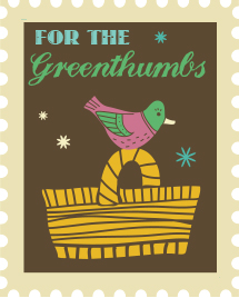 eco toys for greenthumbs