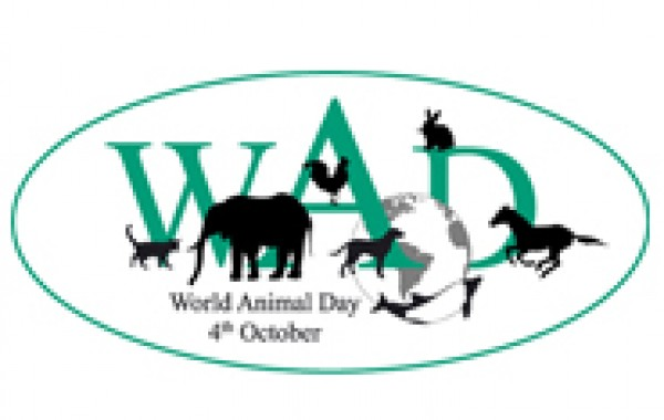 Celebrate World Animal Day on the 4th of October