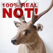 Visit http://www.earthfirst.net.au/dont-be-fooled-by-greenwashing.html