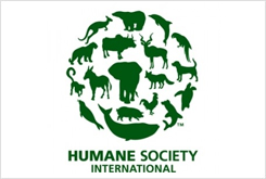 The Humane Society International