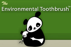 The Enviro Toothbrush
