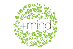 Positive Mind Kinesiology + Coaching