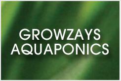 Growzay Aquaponics