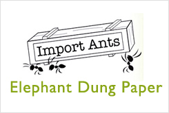 Import Ants- Elephant Dung Paper